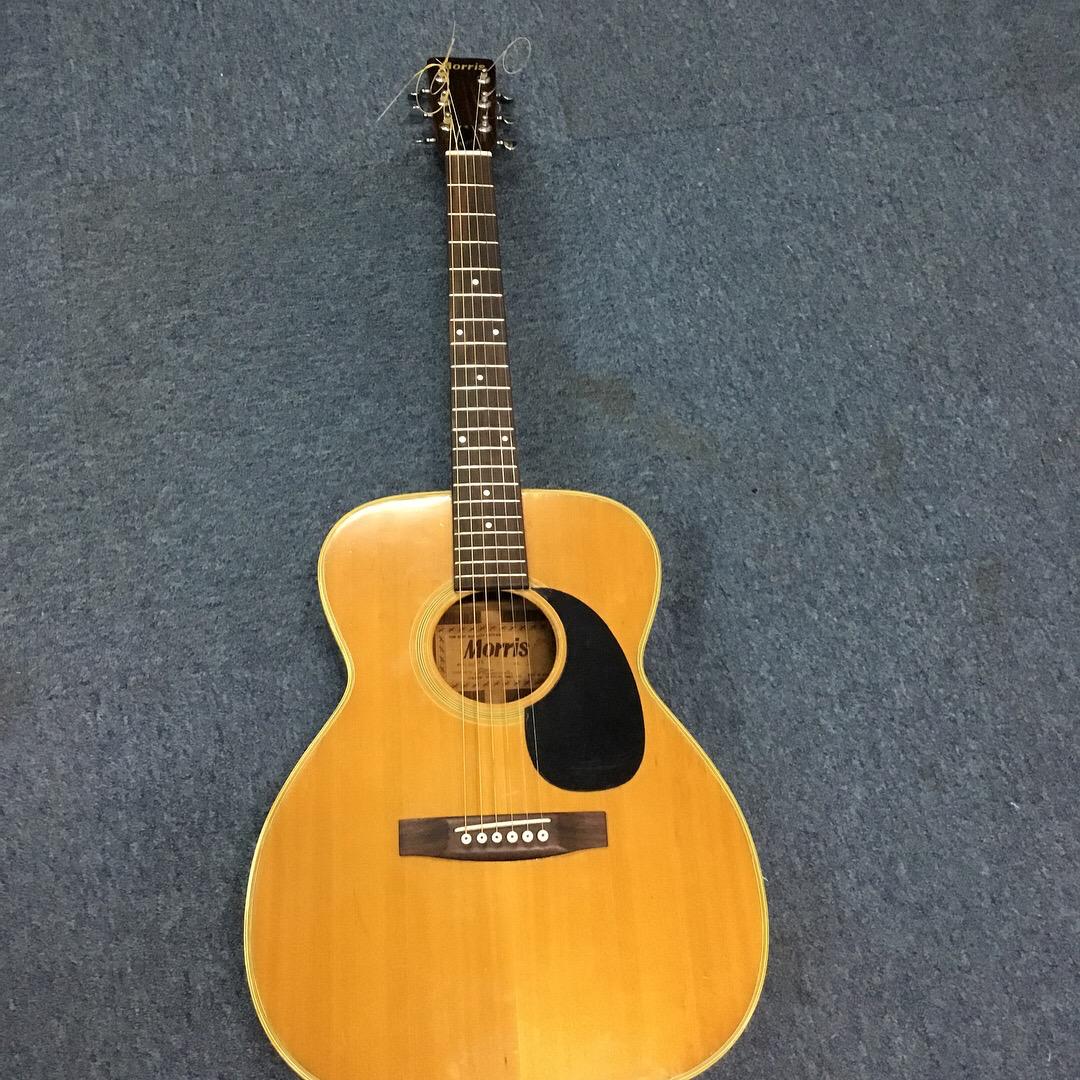 Guitar Acoustic Morris W15